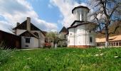 Manastirea Surpatele - 10003 Manastirea Surpatele